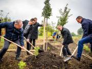 Nagy István, Kósa Lajos, Papp László, Balázs Ákos és Juráskó Róbert fát ültetnek
